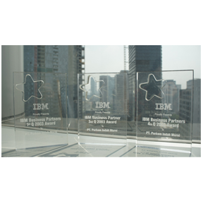 IBM Business Partner 2003 Award