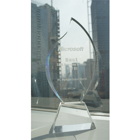 Microsoft Best SMB Business Growth Q3